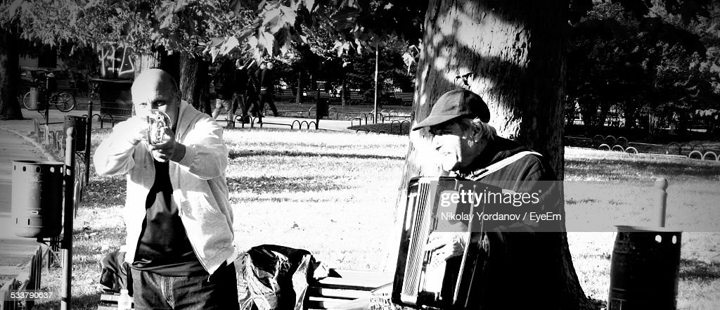 Men Playing Musical Instruments At Park : Foto stock