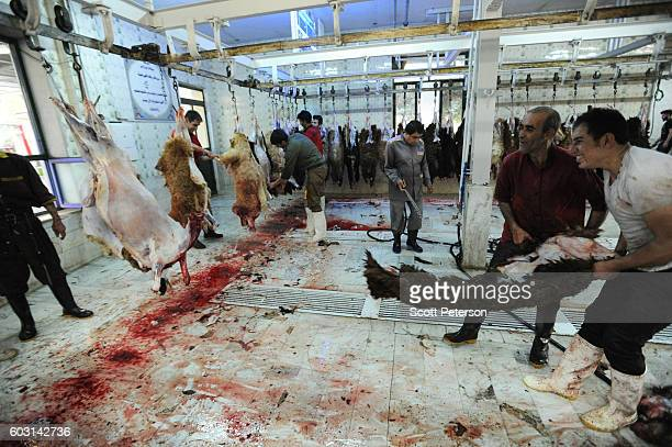 Men pull the skin off a sheep as Iranians marked the Eid AlAdha Islamic 'Feast of the Sacrifice' tradition with the slaughter of hundreds of sheep at...