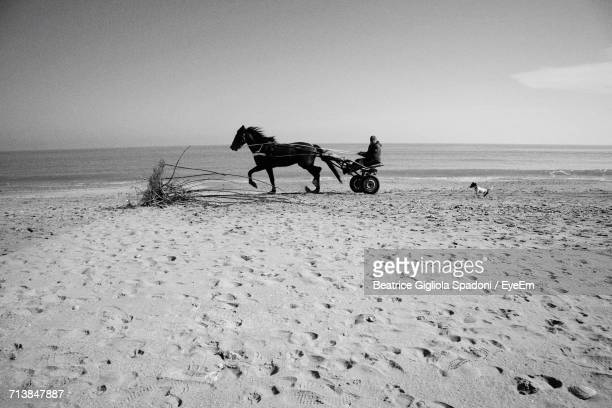 Men Riding Horse On Beach Against Sky
