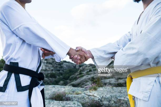 Men shaking hands during a martial arts training