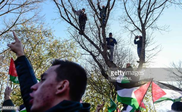 Men stand on the branches of a tree as proPalestinian protesters chant slogans and wave Palestinian flags during a demonstration against the US...