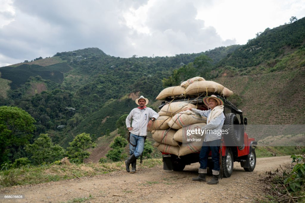 Men transporting sacks of coffee in a car : Stock Photo