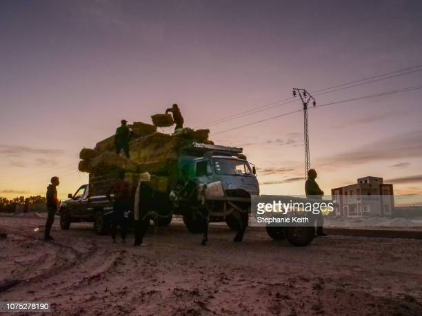 Men unload hay to feed their livestock a day before the start of the Sahara Festival on December 19 2018 in Douz Tunisia The Sahara Festival in its...