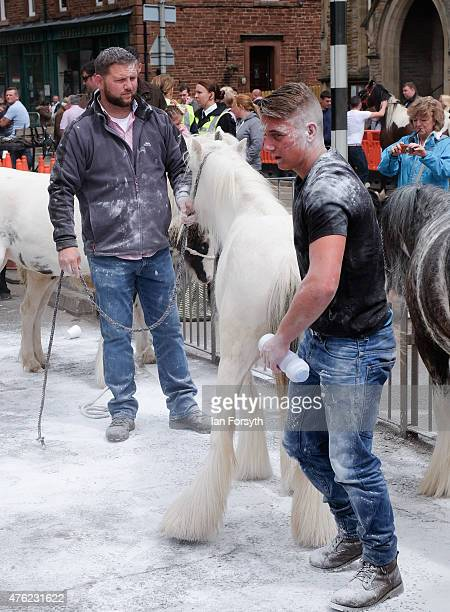 Men use talc on their horses to whiten them up ahead of potential sales during the Appleby Horse Fair on June 7, 2015 in Appleby, England. The fair...
