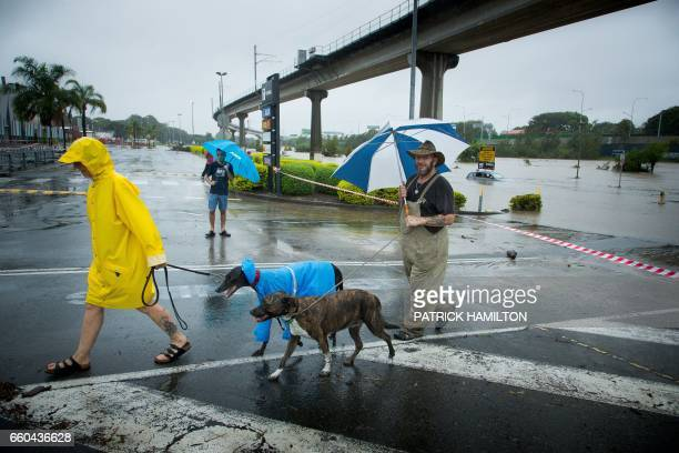 Men walk their dog past submerged cars in a flooded carpark in Toombul in Queensland on March 30 2017 Torrential rain hampered relief efforts after...