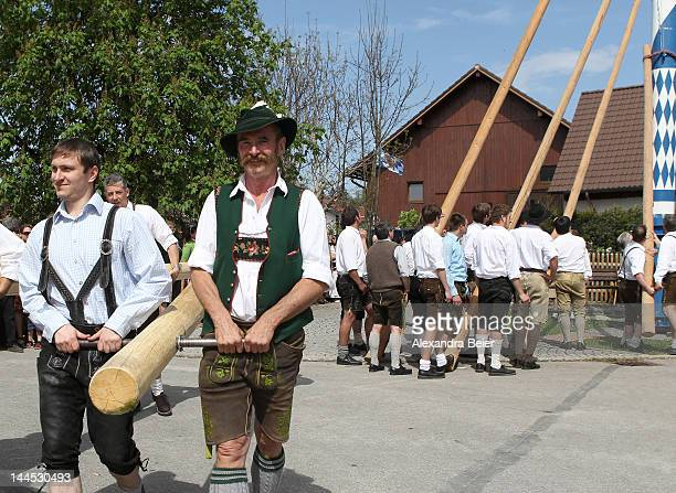 Men wearing traditional Bavarian dress take part in the Bavarian tradition of raising the maypole as part of May Day celebration on May 1 2012 in...