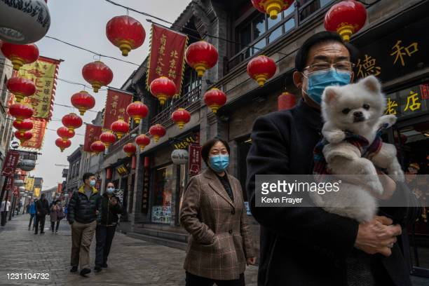 Men wears a protective mask as he carries his dog as they walk under red lanterns, also known as hong denglong, that were put up for the Chinese New...