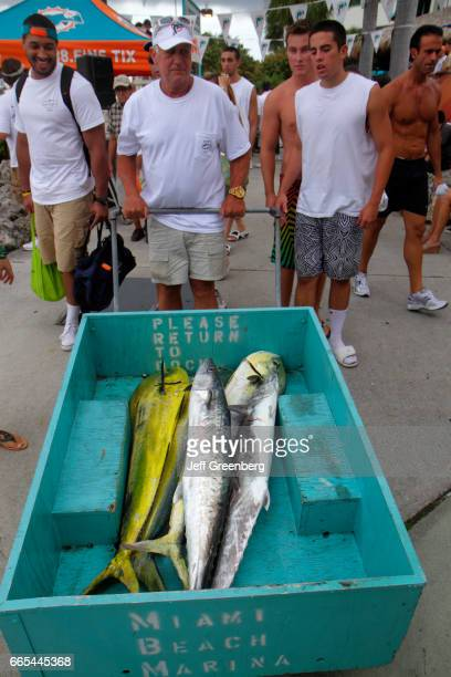 Men with a cart of fish at the deep sea fishing tournament at Miami Beach Marina
