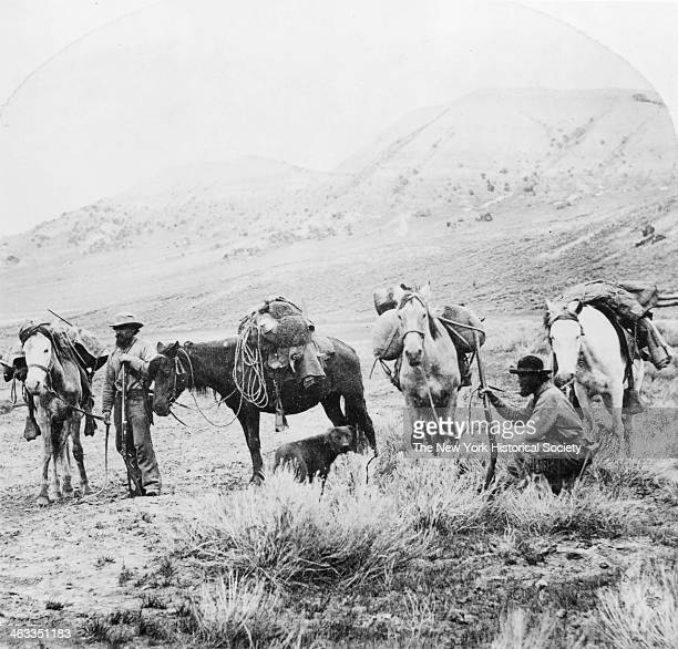 Men with pack horses and dogs are geared up and bound for Little Cottonwood Canyon Mines within the UintaWasatchCache National Forest near Salt Lake...