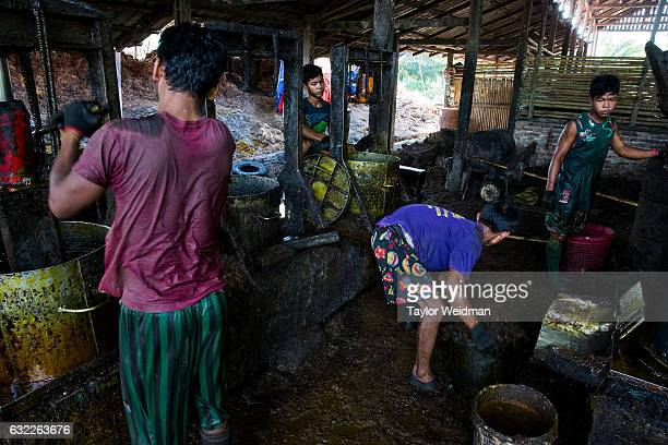 Men work in an oil mill at Asia World palm oil plantation on November 11 2016 in Bank Mae Village Myanmar Here workers take the softened oil palm...