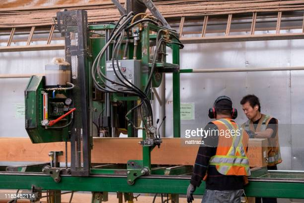 men working in an industrial timber manufacturing facility - lumber industry stock pictures, royalty-free photos & images