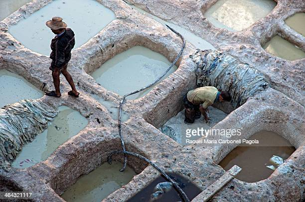 Men working in the Chouara tannery in the old Medina