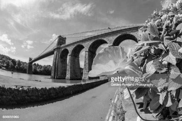menai suspension bridge - ponte sospeso di menai foto e immagini stock