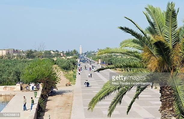 Menara Gardens, Marrakech, Morocco, North Africa, Africa