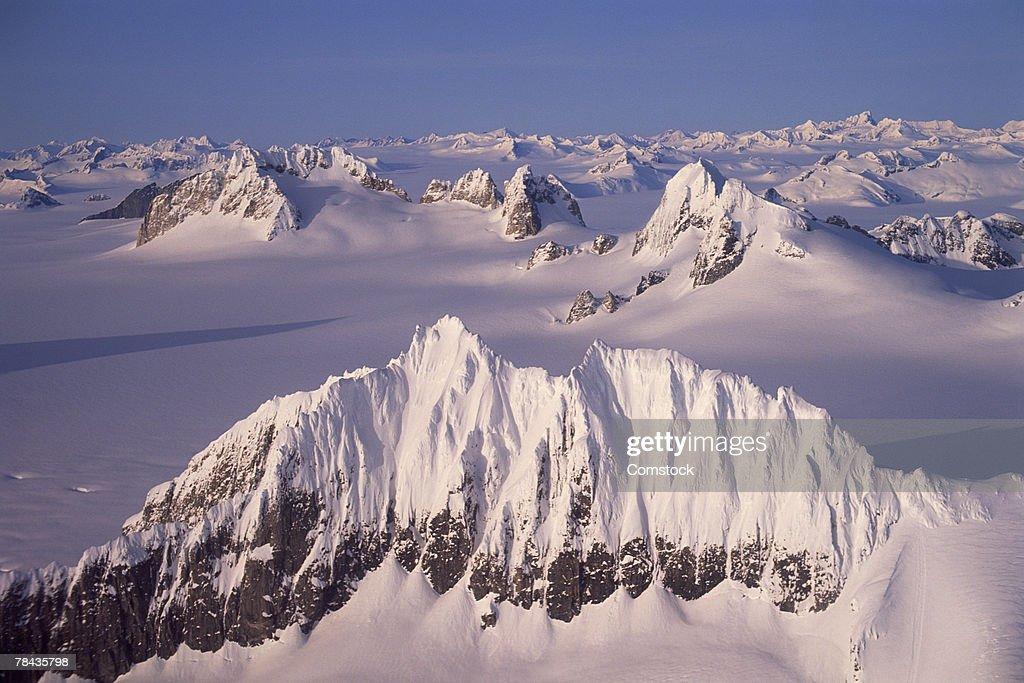 Mendenhall Glacier , Juneau , Alaska : Stockfoto