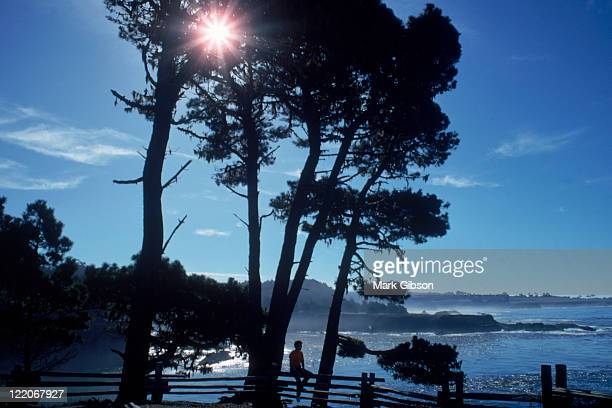 mendocino, ca, russian gulch state park - state park stock pictures, royalty-free photos & images