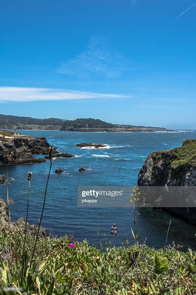 Mendocino Coast, California : Stock Photo