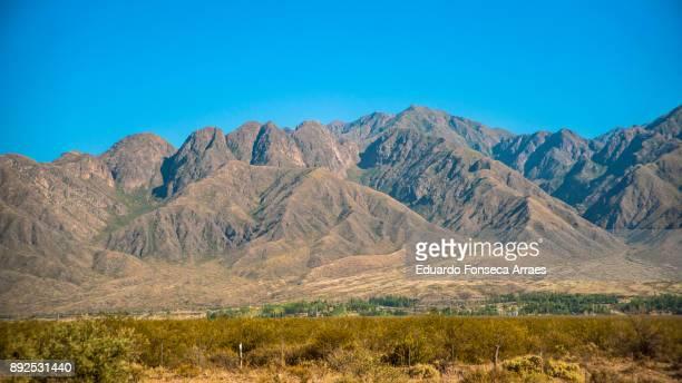 Mendoza Landscape