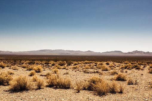 Menschenleer Death Valley in der Wüste 981616386