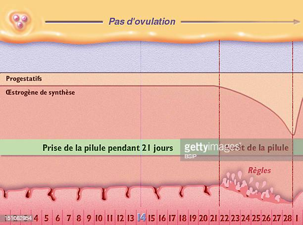 Menstrual Cycle With Contraceptive Pill Taking Schematic Representation Of The Process Of Menstrual Cycle On 29 Days With Contraceptive Pill Taking...