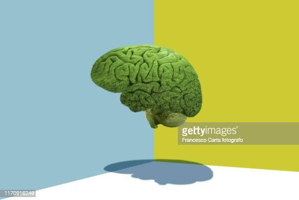 mental balance - breekbaarheid stockfoto's en -beelden