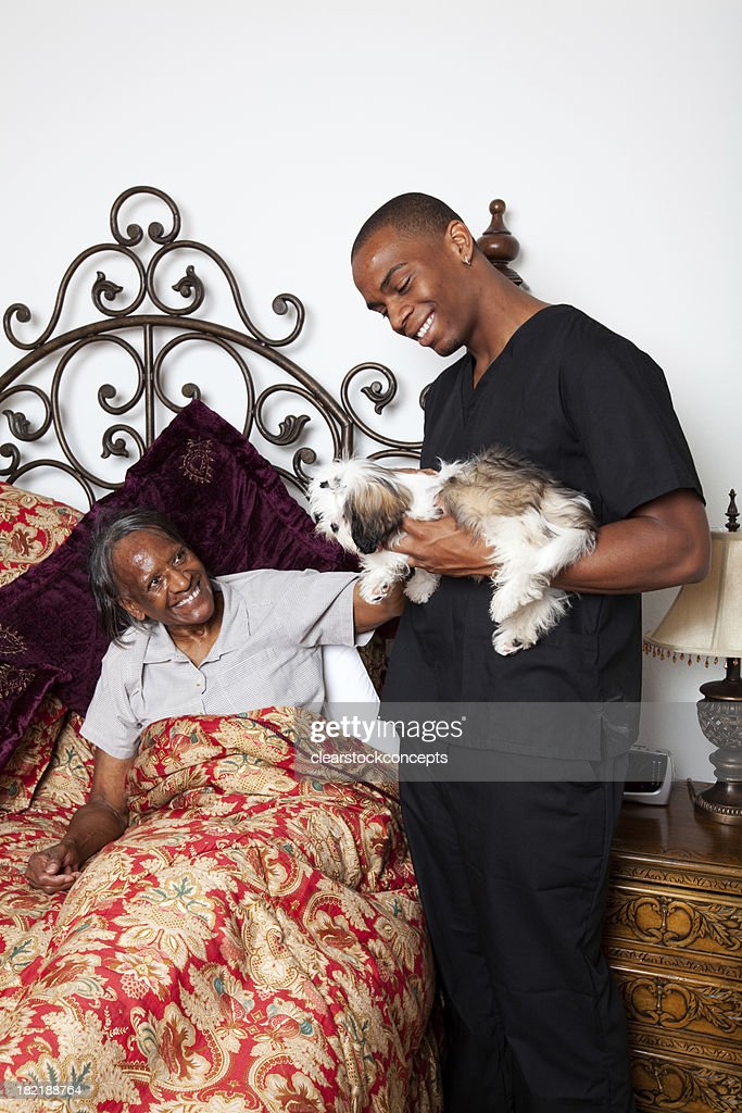 Mental Health Ageism Pet Therapy Elder : Stock Photo