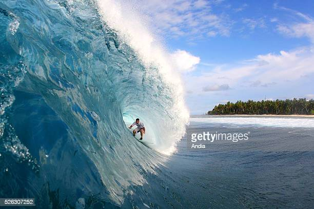 surfing lifestyle Outdoor boardsports to surf to go surfing surfer Surfing plank or board board water wave ocean watershot tube or pipe big or fat