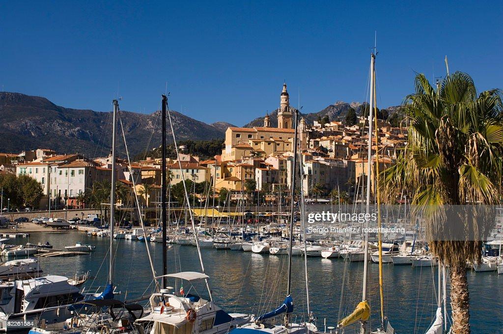 Menton, Alpes-Maritimes, Provence, Cote d'Azur, French Riviera, France, Mediterrranean, Europe : Stock Photo