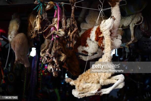 mercado de hechicería - ボリビア ストックフォトと画像