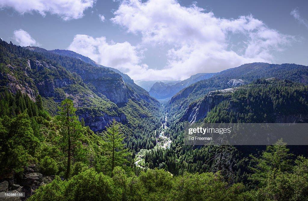 Merced River, Yosemite National Park : Stock Photo