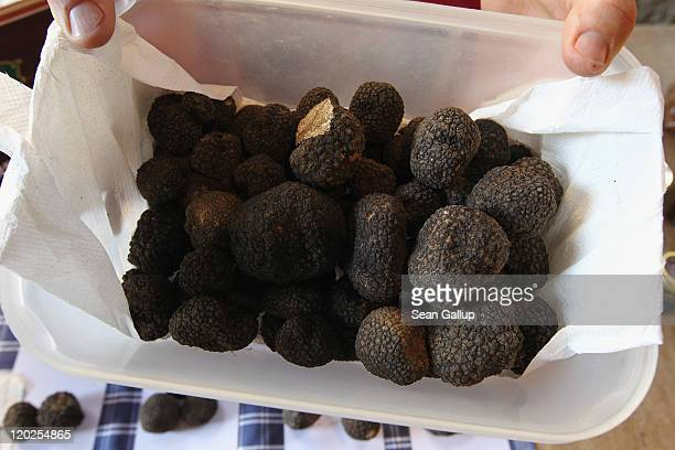 A merchant displays local truffles for sale at an openair market on July 18 2011 in Montalcino Italy Tuscany is among Italy's most popular tourist...