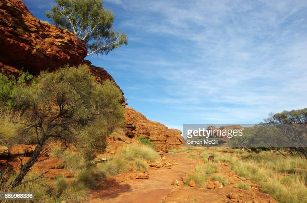Mereenie sandstone domes on the route of the Rim Walk at Kings Canyon, Watarrka National Park, Northern Territory, Australia