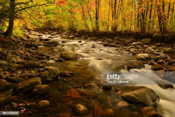 meriden hill brook - brook mitchell stock pictures, royalty-free photos & images