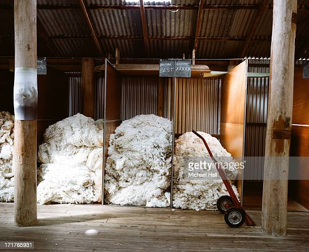 Merino wool fleeces