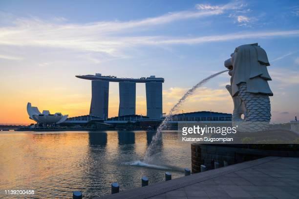 merlion singapore sunrise - marina bay sands skypark stock pictures, royalty-free photos & images