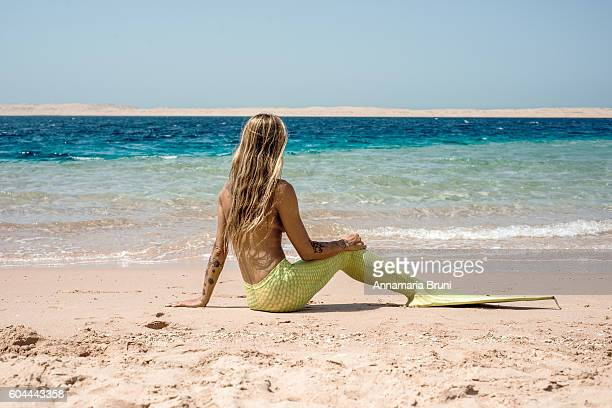 mermaid - mermaid stock photos and pictures