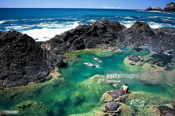 mermaid pools - northland new zealand stock pictures, royalty-free photos & images