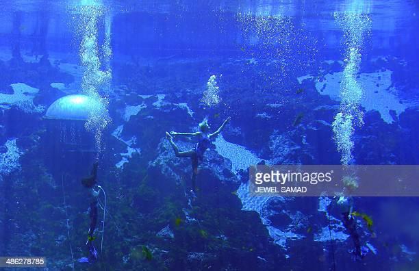 'Mermaids' perform an underwater show of 'Little Mermaid' at Weeki Watchee Springs State Park on April 24 2014 in Weeki Watchee Florida The 538acre...
