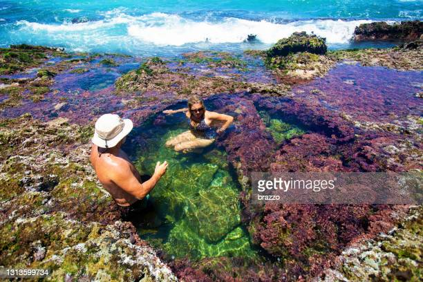 mermaids pool - coral sea stock pictures, royalty-free photos & images