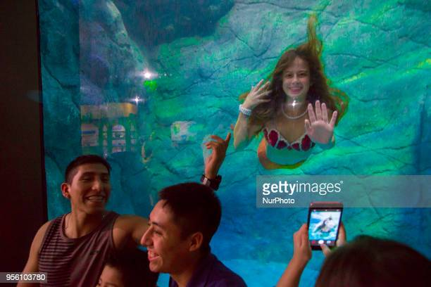 Mermaids swim in the aquarium of São Paulo and enchant children and adults this Tuesday in São Paulo