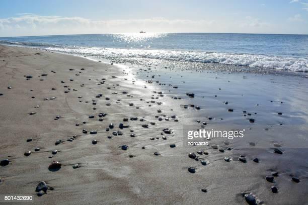 playa mero, roseau, dominica - dominica fotografías e imágenes de stock