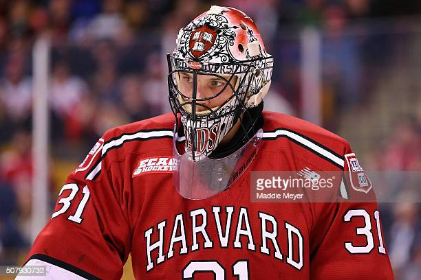 Merrick Madsen of the Harvard Crimson looks on during the third period against the Boston College Eagles at TD Garden on February 1, 2016 in Boston,...