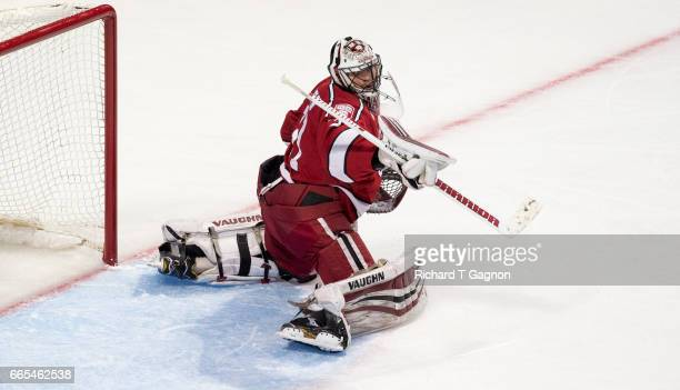 Merrick Madsen of the Harvard Crimson makes a save against the Minnesota Duluth Bulldogs during game one of the 2017 NCAA Division I Men's Hockey...