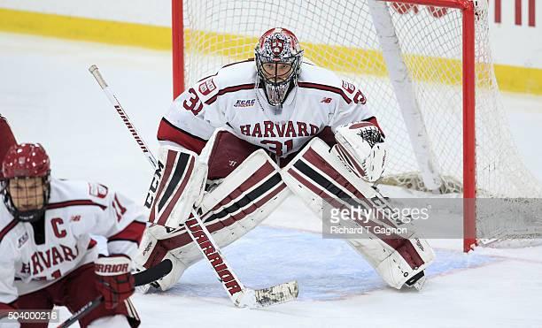Merrick Madsen of the Harvard Crimson tends goal against the Boston University Terriers during NCAA hockey at The Bright-Landry Hockey Center on...