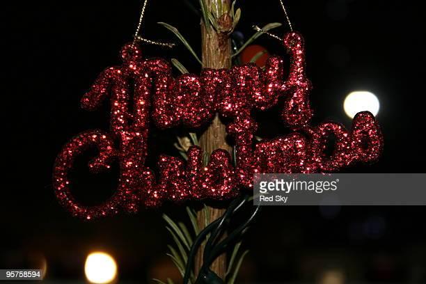 Merry christmas decoration on  a christmas tree