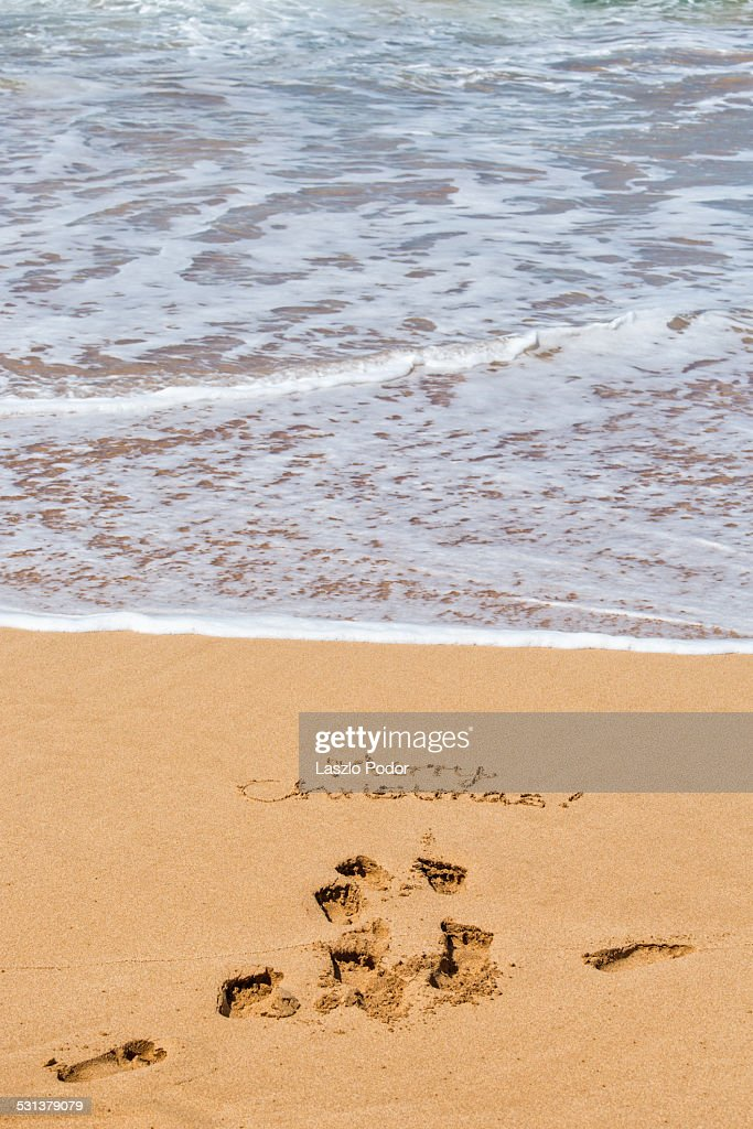 Merry Christmas From Hawaii Stock Photo   Getty Images