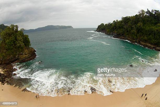 meru betiri national park - east java province stock photos and pictures