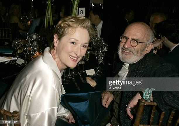 Meryl Streep and Larry Kramer during amfAR's Fifth Annual Honoring with Pride Awards Dinner at Gotham Hall in New York City New York United States