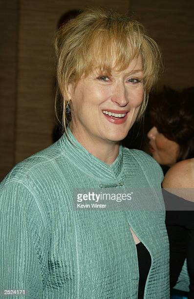 "Meryl Streep at ""One World, One Child Benefit Concert"" for the Children's Health Environmental Coalition honoring Meryl Streep, Nell Newman and Dr...."