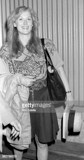 Meryl Streep Attends Life And Loves Of A SheDevil Party On July 7 1989